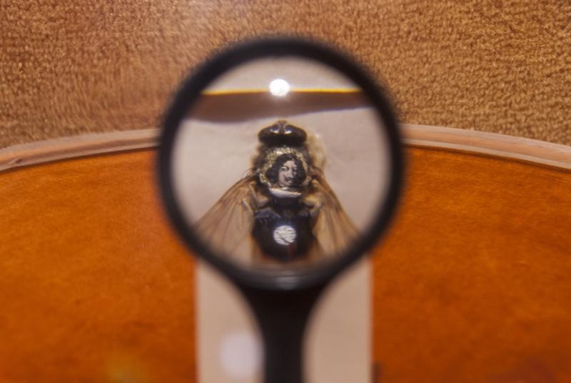 Un mundo oculto en el ojo de una aguja — 360 Grados Press, un giro ...