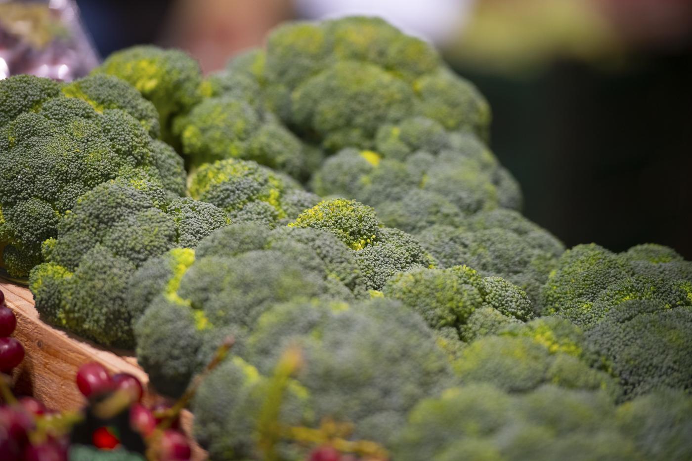 producción de brócoli